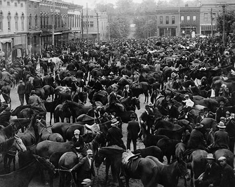 Horses and mules at Court Day on First Street in Richmond